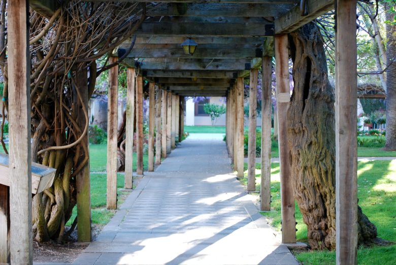 arbor at Santa Clara University