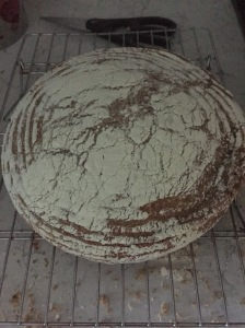 more sourdough
